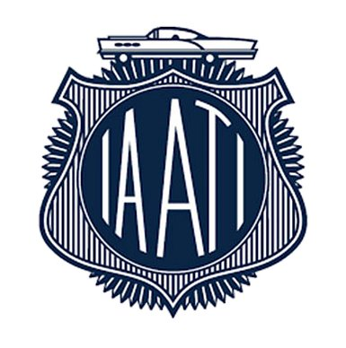 IA of Auto Theft Investigators